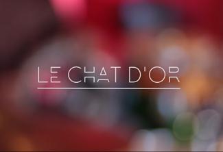 Vignette diespora chat d or