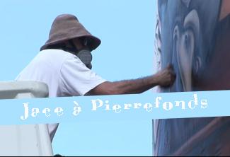 Jace à Pierrefonds peint 100 m² en 2008